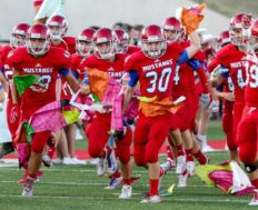 Grapevine Mustangs